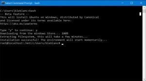Bash de Ubuntu