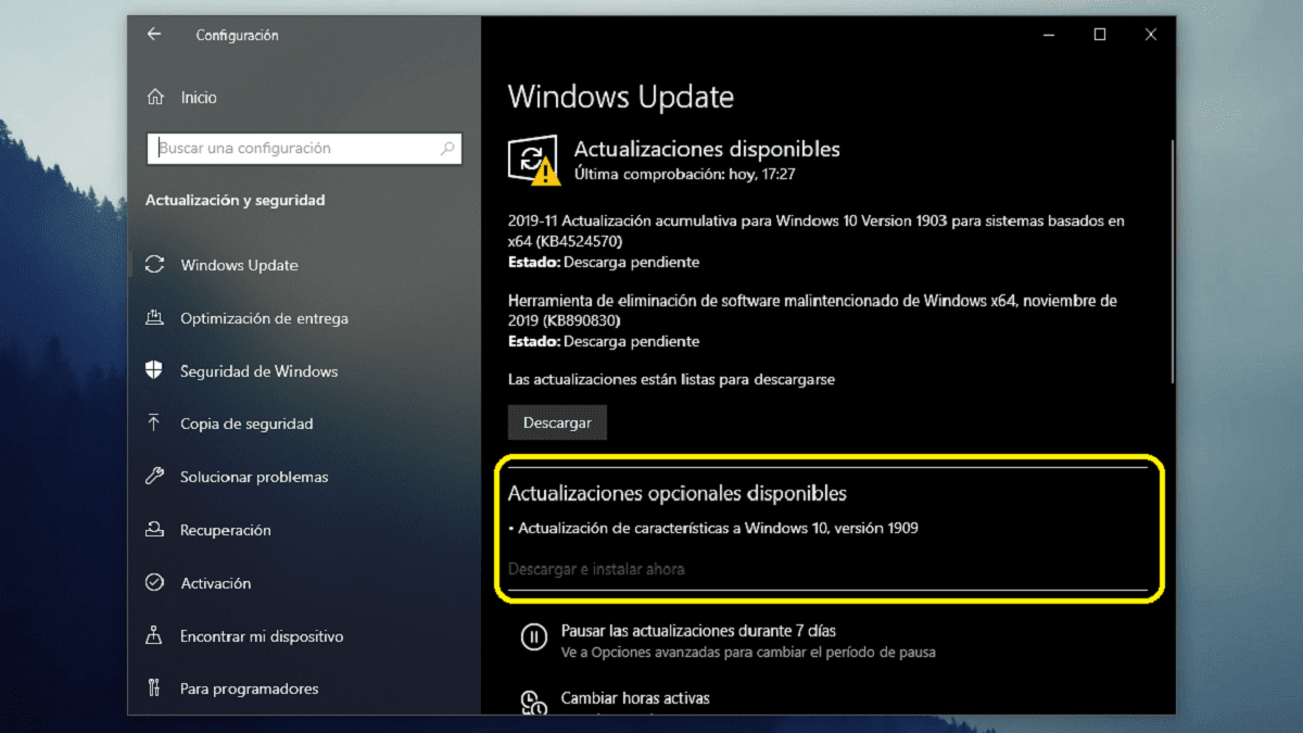 Windows 10 November 2019 Update en Windows Update