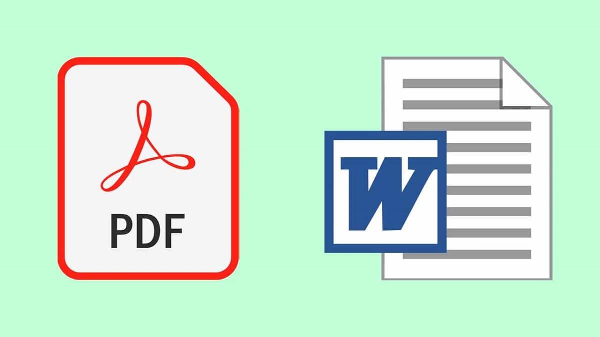PDF / Word